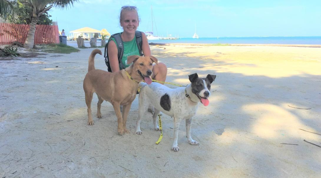 A volunteer with animals in Belize poses for a photo with the dogs on the beach